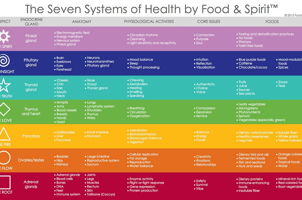 Seven-Systems-of-Health-by-Food-&-Spirit