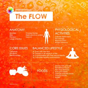 7_System_Infographics_FL2